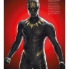 Black_Panther_-_The_Official_Movie_Special_286929.jpg